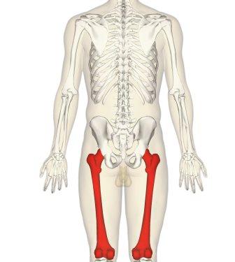 Similar a dolor muscular en el pecho